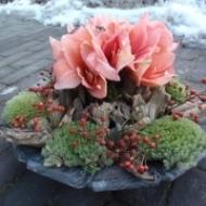 Ben je benieuwd naar de prachtige bloemstukken van 't Festoentje? Dan kan je alvast onze webshop eens bekijken. Hier kan je de bloemstukken trouwens ook online bestellen en laten bezorgen op het adres van jouw keuze.